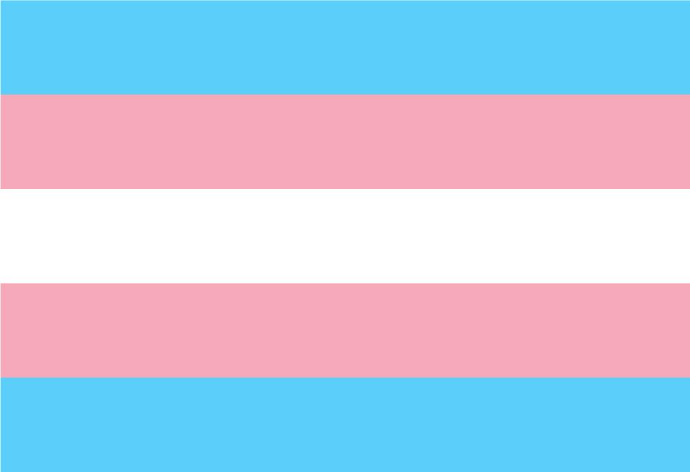 Transgender Stolzfahne