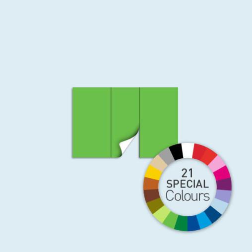 Wand mit 1 Tür mittig 300 x 205 cm Basic/Select, in 21 Sonderfarben erhältlich