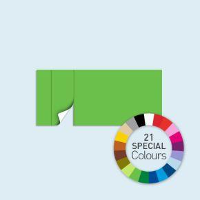 Wand mit 1 Tür links Basic/Select 450 x 205 cm, in Sonderfarben, Seitenkanten mit Befestigungsschlaufen
