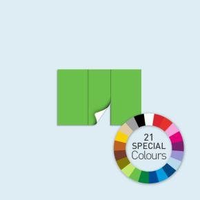 Wand mit 1 Tür mittig Basic/Select/Eco 300 x 205 cm, in Sonderfarben, Seitenkanten mit Befestigungsschlaufen
