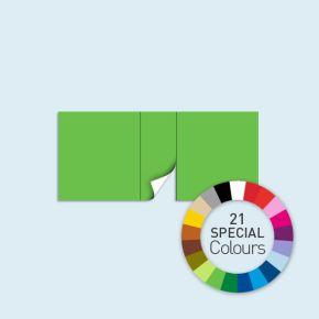 Wand mit 1 Tür mittig Basic/Select 450 x 205 cm, in Sonderfarben, Seitenkanten mit Befestigungsschlaufen