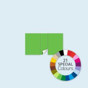 Wand mit 1 Tür mittig Select 400 x 220 cm, in Sonderfarben, Seitenkanten mit Befestigungsschlaufen