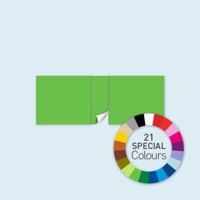 Wand mit 1 Tür mittig Select 600 x 220 cm, in Sonderfarben, Seitenkanten mit Befestigungsschlaufen