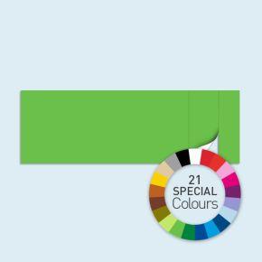 Wand mit 1 Tür rechts Basic/Select 600 x 205 cm, in Sonderfarben, Seitenkanten mit Befestigungsschlaufen