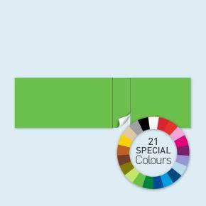 Wand mit 1 Tür rechtsseitig Select 800 x 220 cm, in Sonderfarben, Seitenkanten mit Befestigungsschlaufen