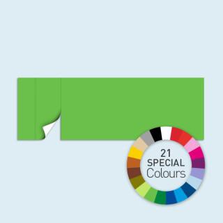 Wand mit 1 Tür links 600 x 205 cm Basic/Select, in 21 Sonderfarben erhältlich
