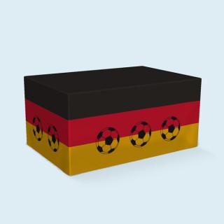 Palettenhusse, 4 Paletten, 120x 80 x 58 cm - Deutschland
